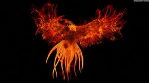 phoenix-bird-22-widescreen-wallpaper